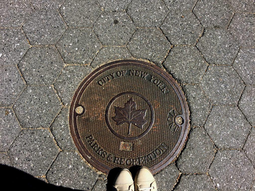 מכסה ביוב ניו יורק