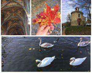 תמונת קולאז של ארבע תמונות. תחתונה ברבורים בנהר. עליונה ימנית מונומנט בפארק vysehred, אמצעית יד מחזיקה זר עלי שלכת באדום וצהוב, שמאלית קירות ותקרה מצוירים בכנסיה.